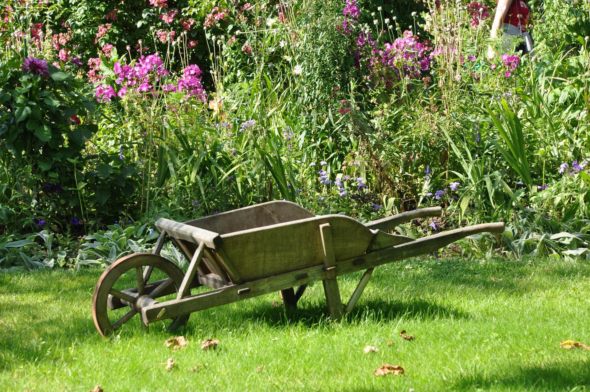 Stefan Artmann Gartengestaltung Ostfriesland byPixabay FotoStefan Artmann Gartengestaltung Ostfriesland byPixabay Foto